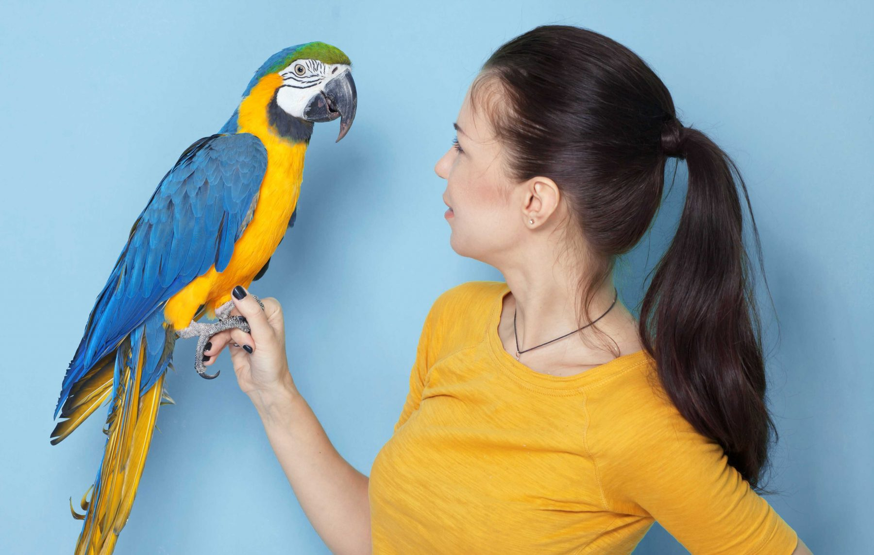 Girl with pet parrot
