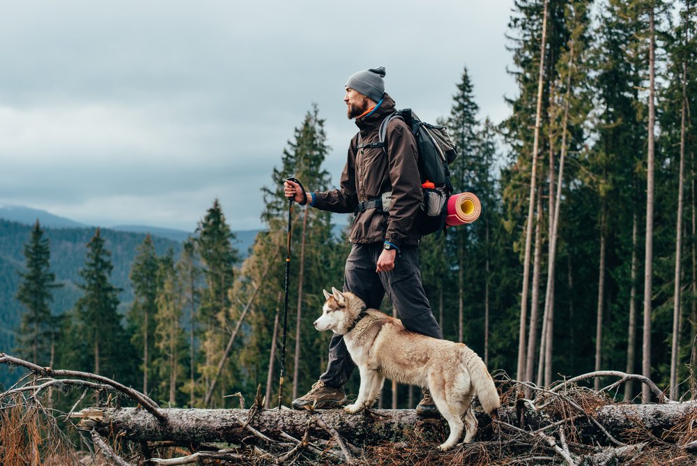 A man and dog standing on a fallen tree trunk